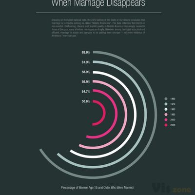 When Marriage Disappears: A Visual Representation of US Marriage Statistics [IN | Data visualization design, Infographic, Data visualization