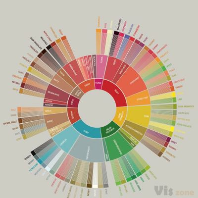 What it Means to Reinvent the Coffee Flavor Wheel